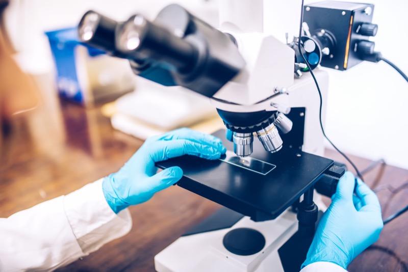 Laboratoire Jeanne : l'établissement janzéen adopte une nouvelle stratégie